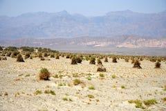 Het Landschap van de Woestijn van de Vallei van de dood Royalty-vrije Stock Foto