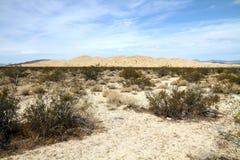 Het landschap van de woestijn (woestijn Mojave) stock foto