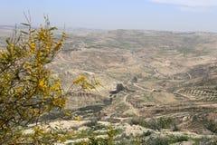 Het landschap van de woestijnberg (luchtmening), Jordanië, Midden-Oosten Royalty-vrije Stock Foto's