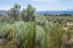 Het landschap van de Yakimavallei Royalty-vrije Stock Foto's