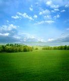 Het landschap van de zomer stock afbeeldingen