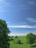 Het landschap van de zomer stock foto's