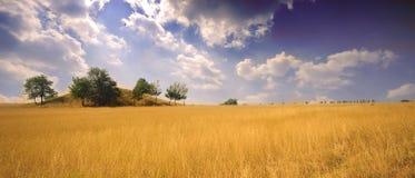 Het landschap van de zomer Royalty-vrije Stock Fotografie