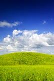 Het landschap van de zomer. Stock Afbeelding