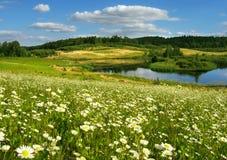 Het landschap van de zomer Royalty-vrije Stock Foto's