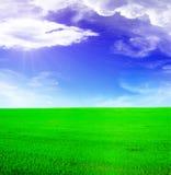 Het landschap van de zomer - blauwe zonnige hemel Stock Foto's
