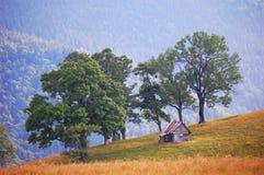 Het landschap van de zomer in de bergen Stock Foto