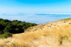 Het landschap van de zomer in de bergen Stock Fotografie