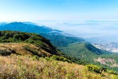 Het landschap van de zomer in de bergen Royalty-vrije Stock Afbeelding