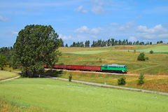 Het landschap van de zomer met de goederentrein royalty-vrije stock afbeelding