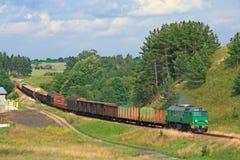 Het landschap van de zomer met de goederentrein stock afbeeldingen