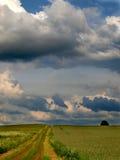 Het landschap van de zomer met groene gras, weg en wolken Royalty-vrije Stock Fotografie