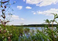 Het landschap van de zomer met meer Stock Foto's