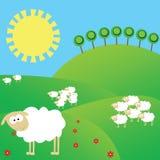 Het landschap van de zomer met schapen vector illustratie