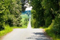 Het landschap van de zomer van een dorpsweg Stock Afbeeldingen