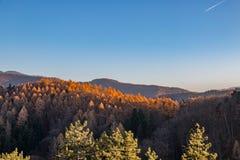 Het landschap van de zomerbergen in Transsylvanië, Roemenië royalty-vrije stock foto's