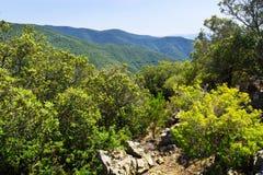 Het landschap van de zomerbergen van Montseny catalonië Royalty-vrije Stock Afbeelding