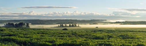 Het landschap van de de zomerdageraad Royalty-vrije Stock Foto's