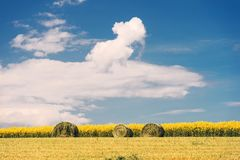 Het landschap van het de zomerlandbouwbedrijf met hooibergen op het gebied stock afbeeldingen