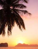 Het landschap van de zonsondergang Stock Foto