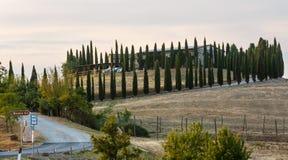 Het landschap van het de zonsopgangplatteland van Toscanië, Italië royalty-vrije stock foto's