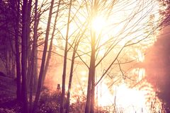 Het Landschap van de zonsopgangsleep Stock Fotografie