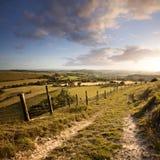 Het landschap van Dorset Stock Afbeelding