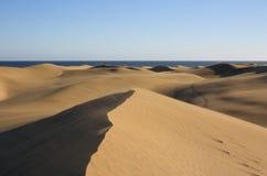 Het landschap van duinen Stock Afbeeldingen