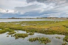 Het Landschap van het Eiland Wight royalty-vrije stock afbeeldingen