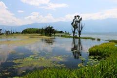 Het landschap van erhaimeer, yunnan dali, China stock foto