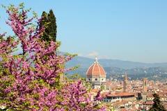 Het landschap van Florence Royalty-vrije Stock Foto's