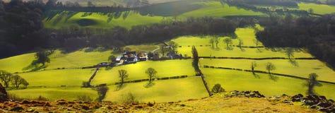Het landschap van gebieden en van weiden Stock Afbeelding