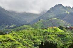 Het landschap van Gran Canaria, Spanje Stock Afbeeldingen