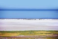 Het Landschap van Great Salt Lake Royalty-vrije Stock Afbeelding