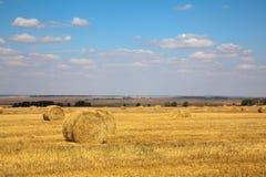 Het landschap van Haybale Stock Foto
