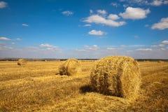 Het landschap van Haybale Stock Foto's