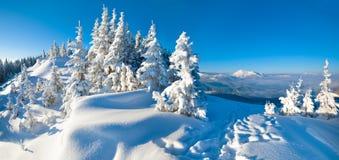 Het landschap van het de bergpanorama van de winter Stock Afbeelding