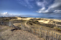 Het landschap van het duin Stock Foto