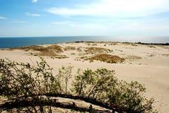 Het landschap van het duin stock foto's