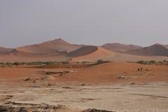 Het Landschap van het Duin van de woestijn Royalty-vrije Stock Afbeelding