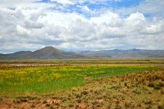 Het landschap van het hoge plateau Royalty-vrije Stock Foto's