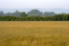 Het landschap van het land Stock Afbeelding