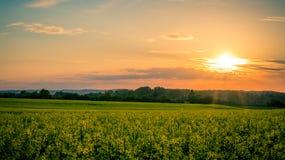 Het landschap van het land Royalty-vrije Stock Afbeelding