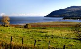 Het landschap van het land automn Royalty-vrije Stock Foto