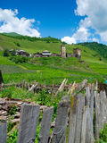Het landschap van het land in Davberi Stock Fotografie