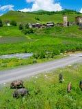 Het landschap van het land in Davberi Stock Foto's