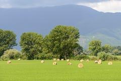 Het landschap van het land in Lazio (Italië) Stock Foto's