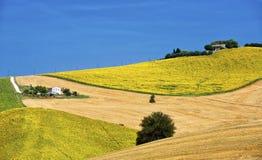 Het landschap van het land in Marsen (Italië) Stock Foto