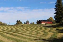 Het Landschap van het landbouwbedrijf stock afbeeldingen