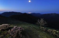 Het landschap van het maanlicht Stock Afbeeldingen